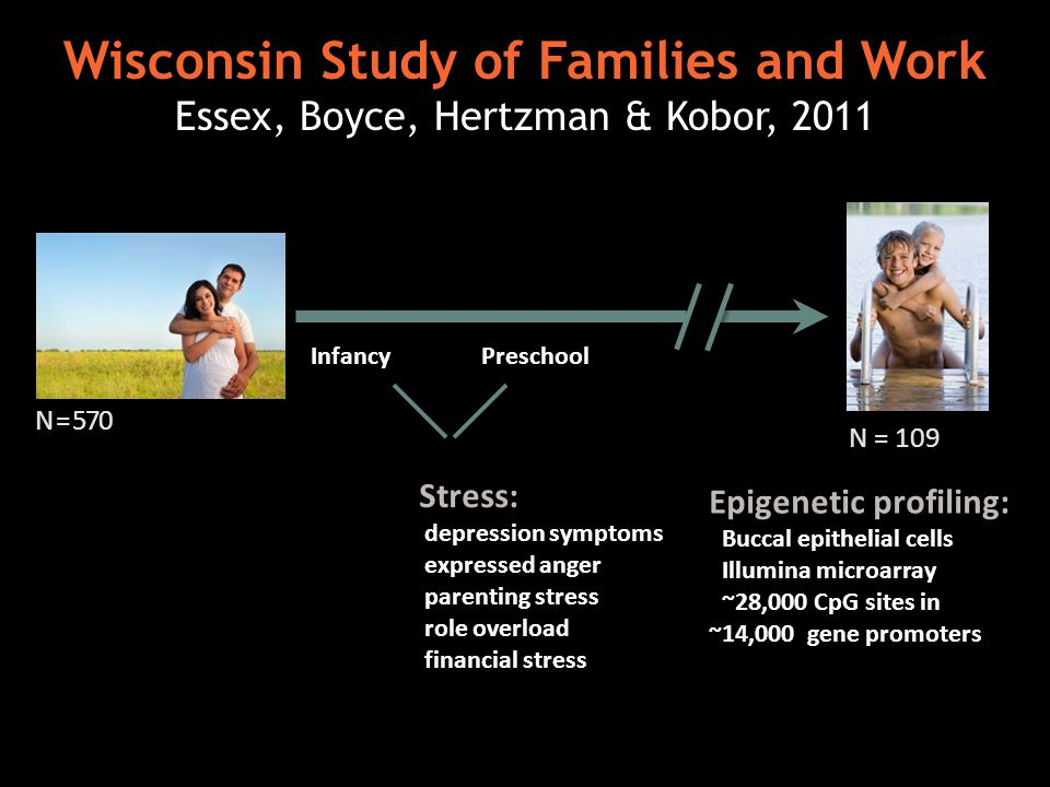 Wisconsin Study of Families and Work Essex, Boyce, Hertzman & Kobor, 2011 N = 570 Stress: depression symptoms expressed anger parenting stress role overload financial stress Preschool Infancy N = 109 Epigenetic profiling: Buccal epithelial cells Illumina microarray ~28,000 CpG sites in ~14,000 gene promoters