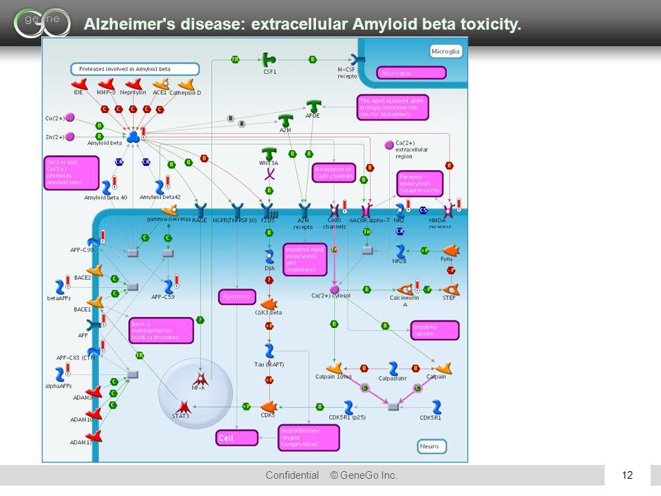 Confidential © GeneGo Inc.12 Alzheimer s disease: extracellular Amyloid beta toxicity.