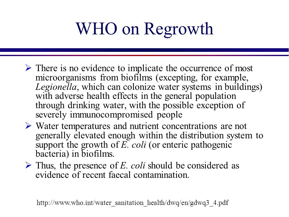 WHO on Regrowth  There is no evidence to implicate the occurrence of most microorganisms from biofilms (excepting, for example, Legionella, which can