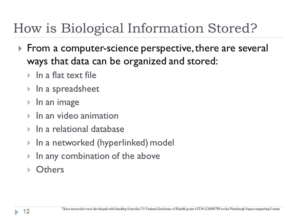 How is Biological Information Stored.