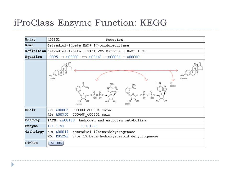 iProClass Enzyme Function: KEGG