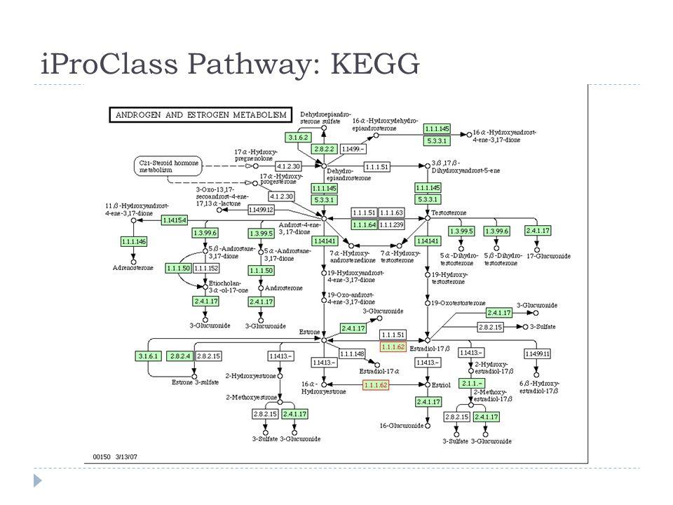 iProClass Pathway: KEGG