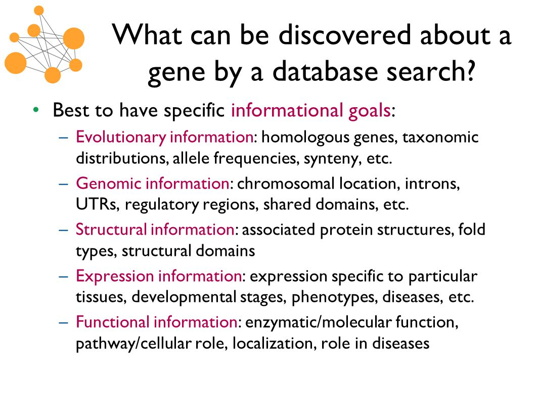 What can be discovered about a gene by a database search.