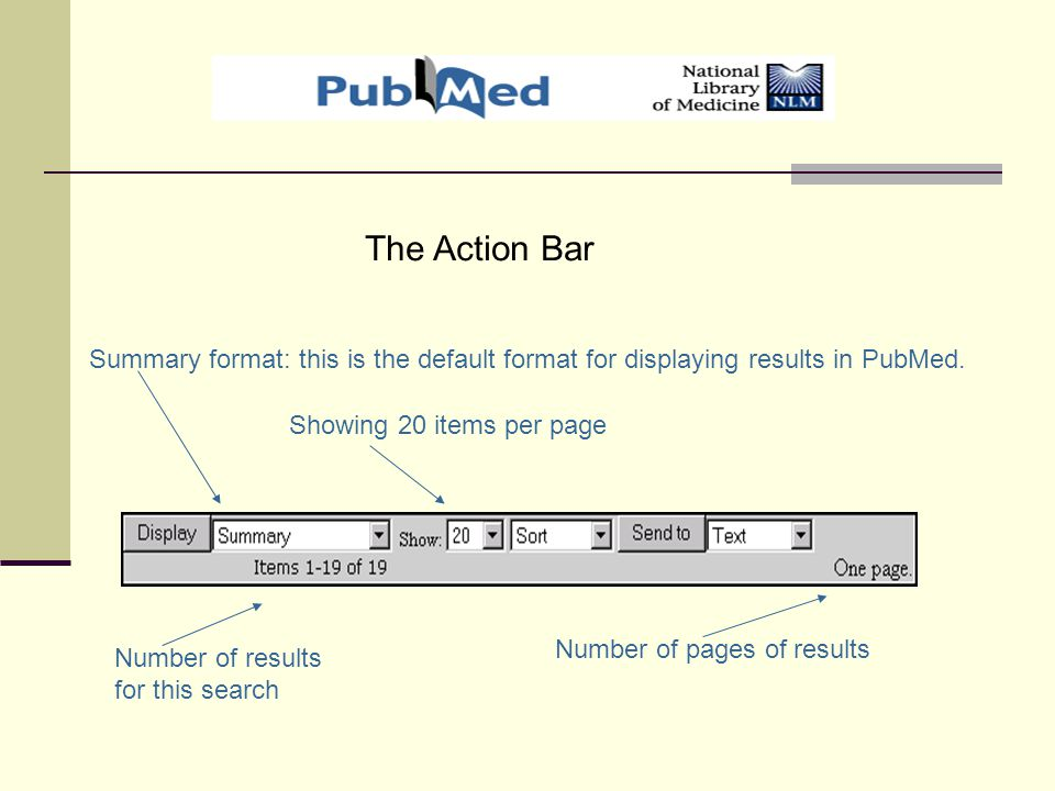Summary format: this is the default format for displaying results in PubMed.