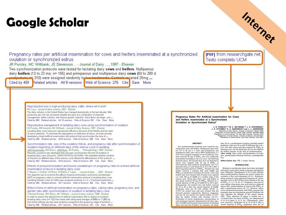 Internet Google Scholar