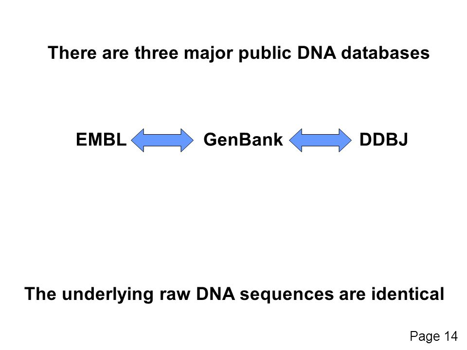 GenBankEMBLDDBJ There are three major public DNA databases The underlying raw DNA sequences are identical Page 14