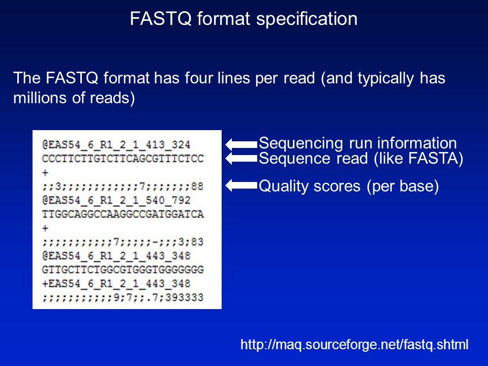 FASTQ format specification The FASTQ format has four lines per read (and typically has millions of reads) http://maq.sourceforge.net/fastq.shtml Seque