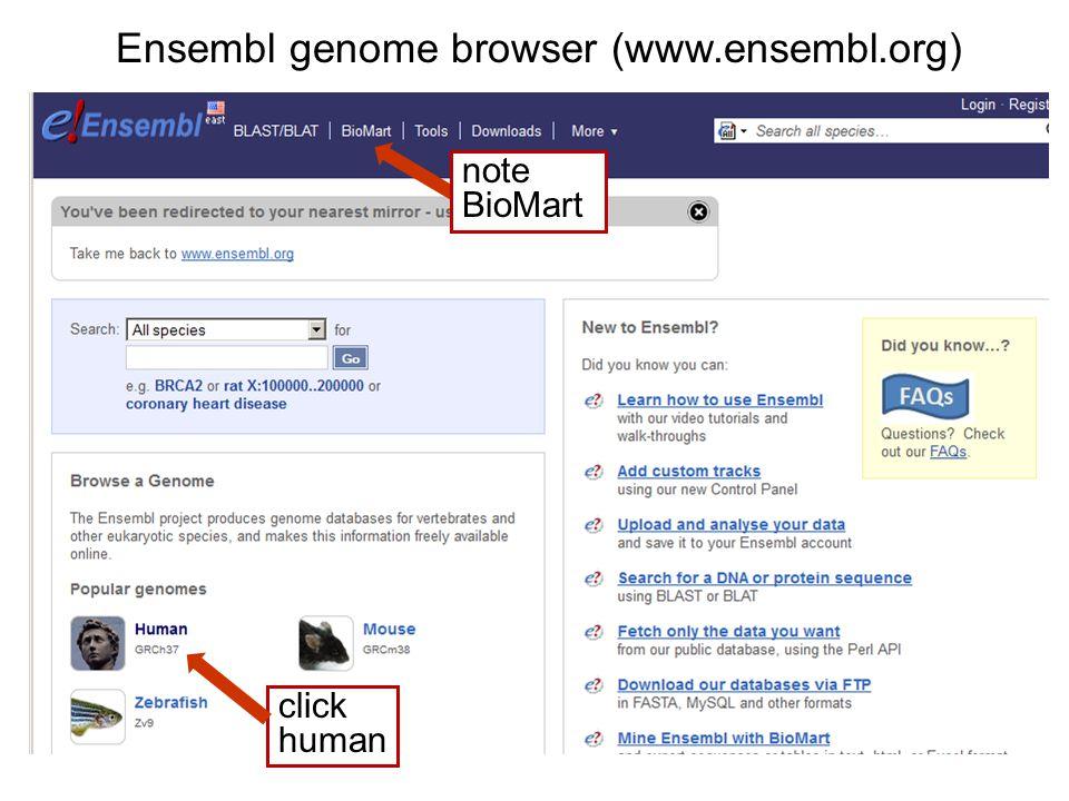 Ensembl genome browser (www.ensembl.org) click human note BioMart