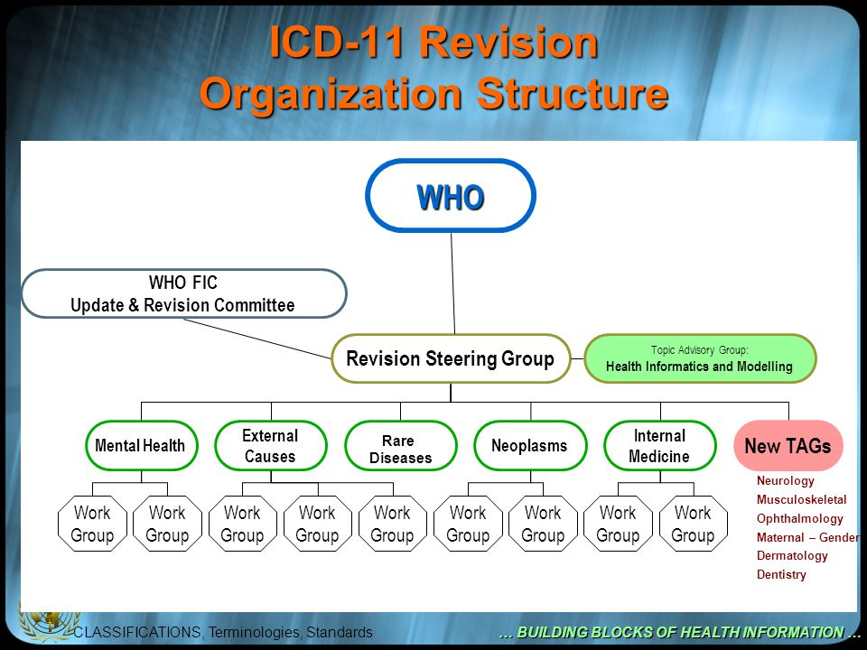 CLASSIFICATIONS, Terminologies, Standards … BUILDING BLOCKS OF HEALTH INFORMATION … ICD-11 Revision Organization Structure WHO WHO FIC Update & Revision Committee Revision Steering Group Mental HealthNeoplasms Internal Medicine New TAGs External Causes Work Group Topic Advisory Group: Health Informatics and Modelling Rare Diseases Neurology Musculoskeletal Ophthalmology Maternal – Gender Dermatology Dentistry