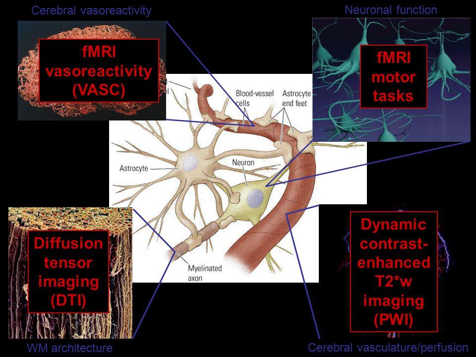 WM architecture Diffusion tensor imaging (DTI) Neuronal function fMRI motor tasks Cerebral vasculature/perfusion Dynamic contrast- enhanced T2*w imaging (PWI) Cerebral vasoreactivity fMRI vasoreactivity (VASC)