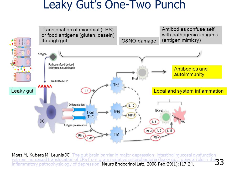 32 TJ Disassembly Resulting in Unremitting Immune Activation via Leaky Gut Fasano A.