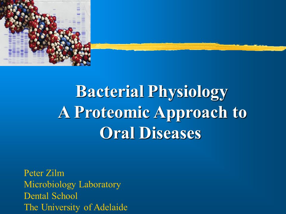 Bacterial Physiology A Proteomic Approach to Oral Diseases Oral Diseases Peter Zilm Microbiology Laboratory Dental School The University of Adelaide