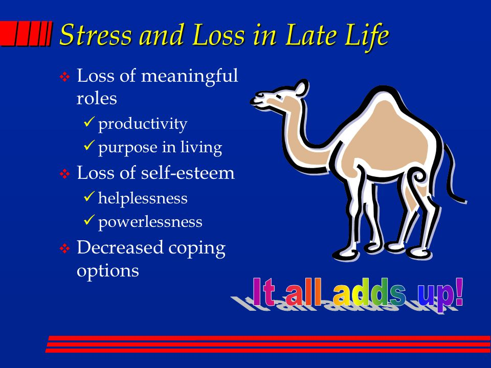Stress and Loss in Late Life  Loss of meaningful roles productivity purpose in living  Loss of self-esteem helplessness powerlessness  Decreased co