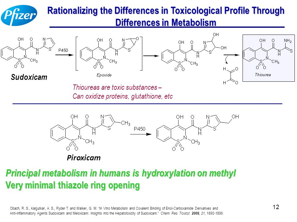 12 Rationalizing the Differences in Toxicological Profile Through Differences in Metabolism Thioureas are toxic substances – Can oxidize proteins, glu