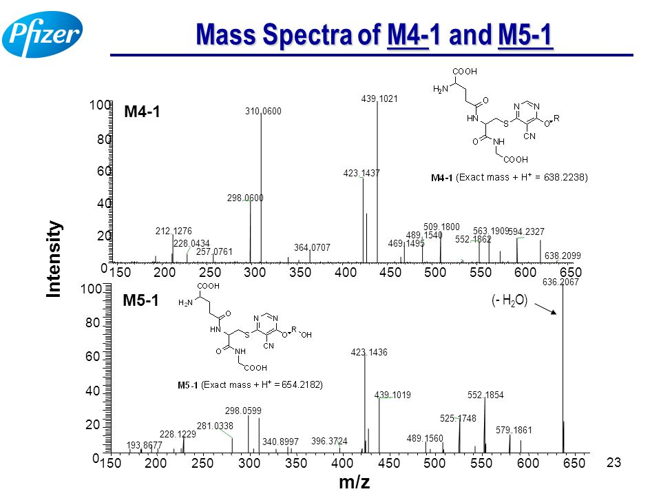 23 Mass Spectra of M4-1 and M5-1 (- H 2 O)