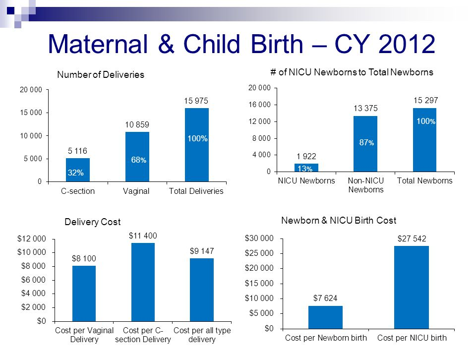 Maternal & Child Birth – CY 2012 23