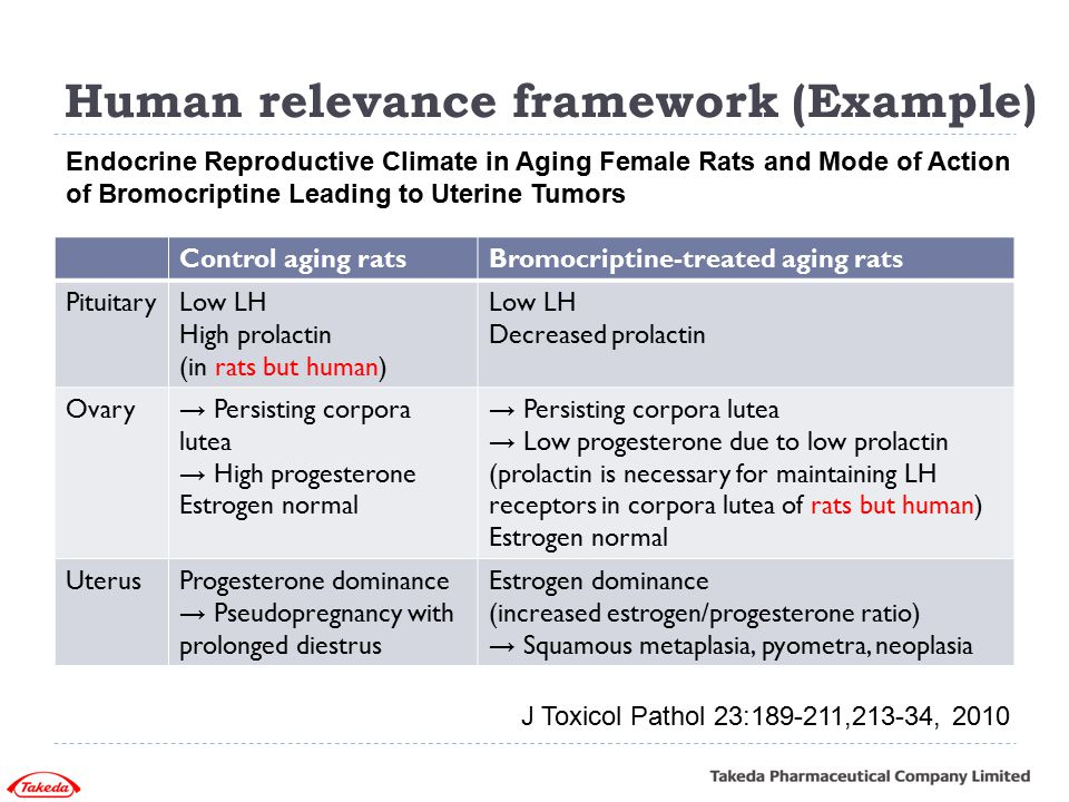 Human relevance framework (Example) Control aging ratsBromocriptine-treated aging rats PituitaryLow LH High prolactin (in rats but human) Low LH Decre