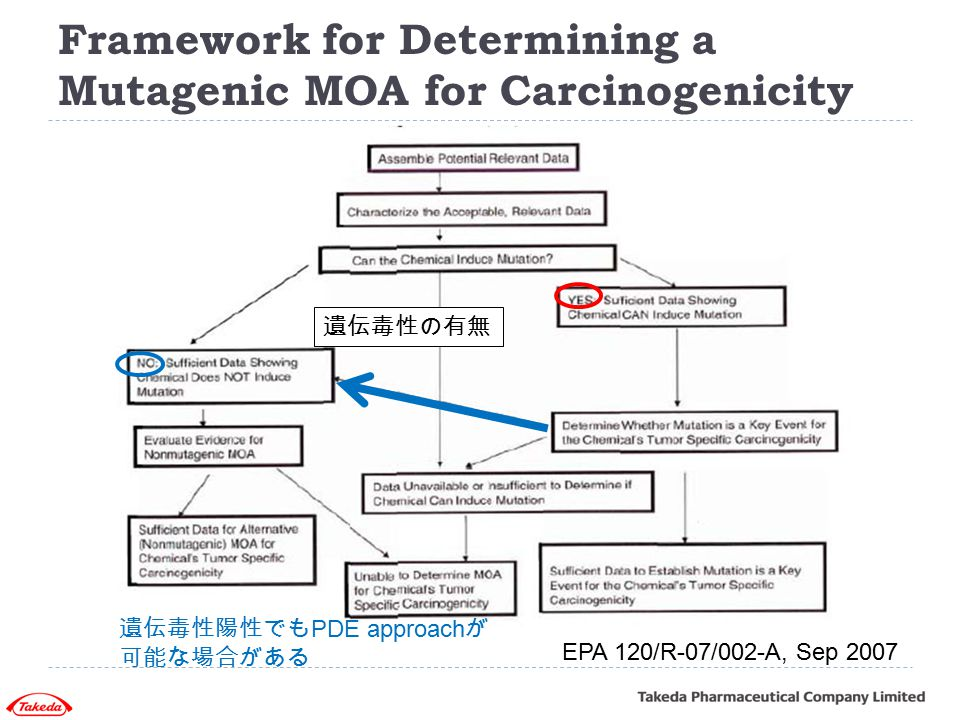 Framework for Determining a Mutagenic MOA for Carcinogenicity EPA 120/R-07/002-A, Sep 2007 遺伝毒性陽性でも PDE approach が 可能な場合がある 遺伝毒性の有無