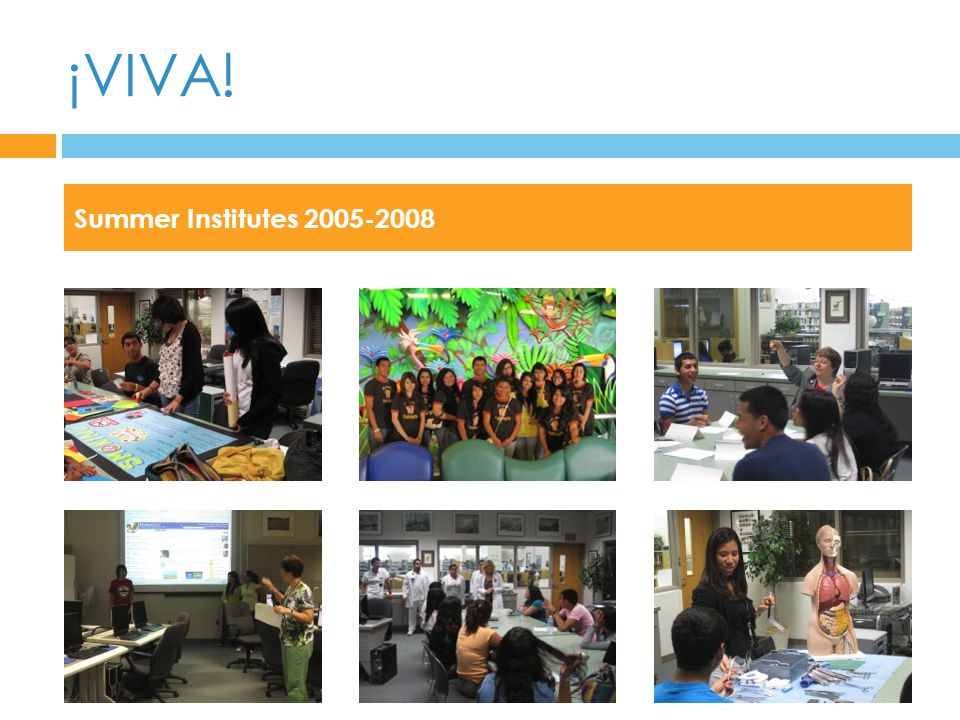 ¡VIVA! Summer Institutes 2005-2008