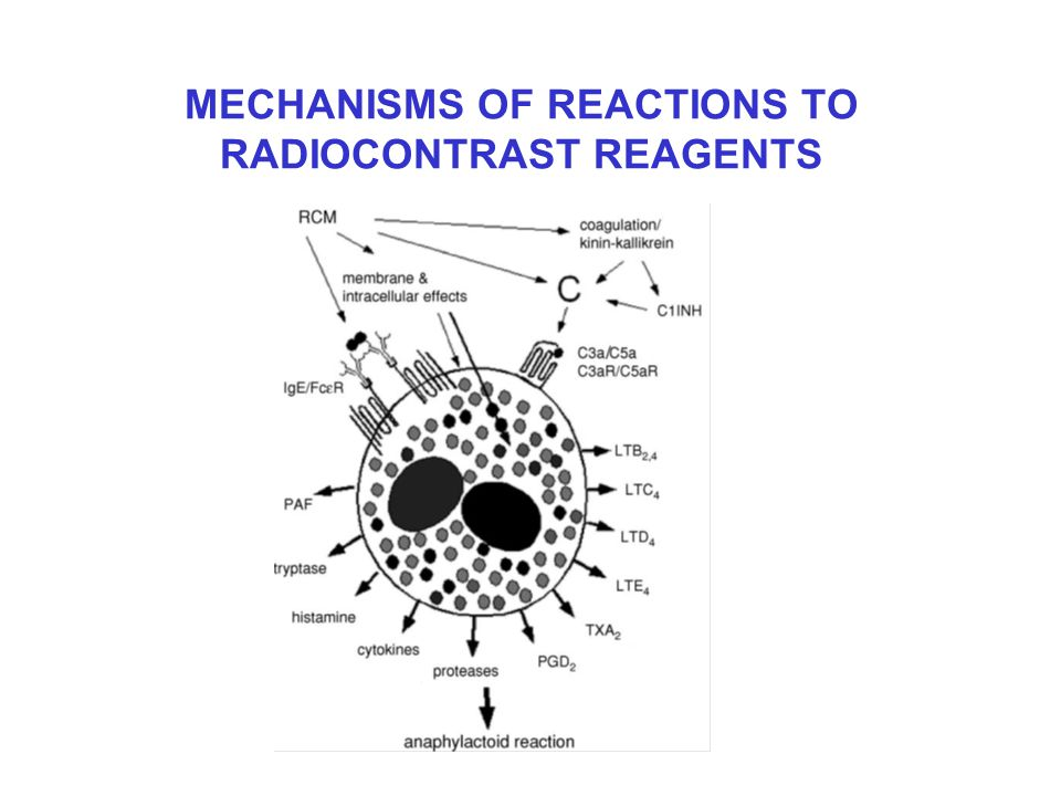 MECHANISMS OF REACTIONS TO RADIOCONTRAST REAGENTS