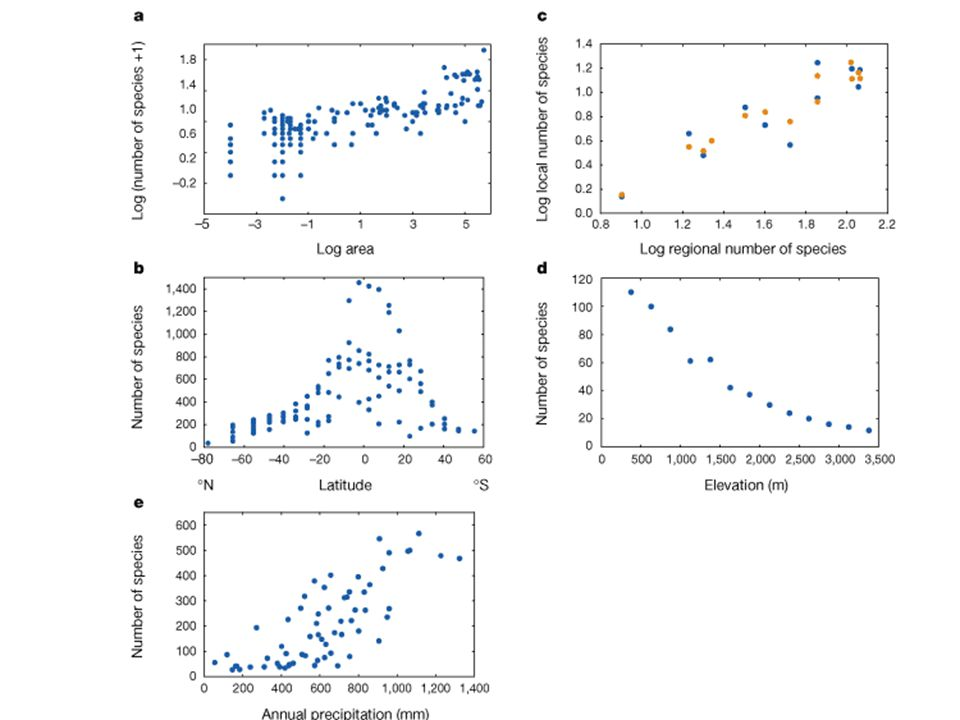 Spatial Patterns in Species Richness Nature 2000 v.405 earthworms Lacustrine fishes birds bats Woody plants