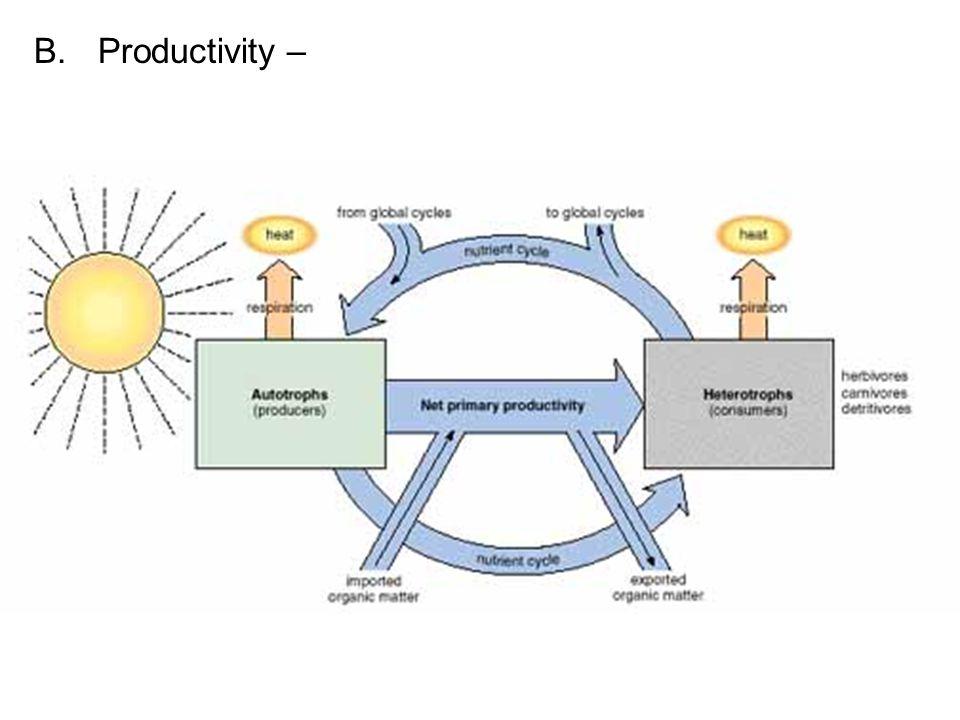 B.Productivity –