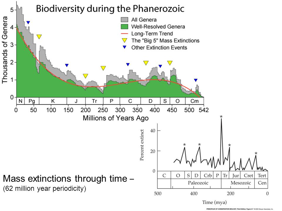 Mass extinctions through time – (62 million year periodicity)