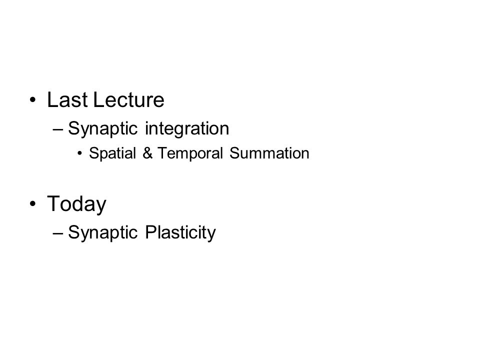 Last Lecture –Synaptic integration Spatial & Temporal Summation Today –Synaptic Plasticity