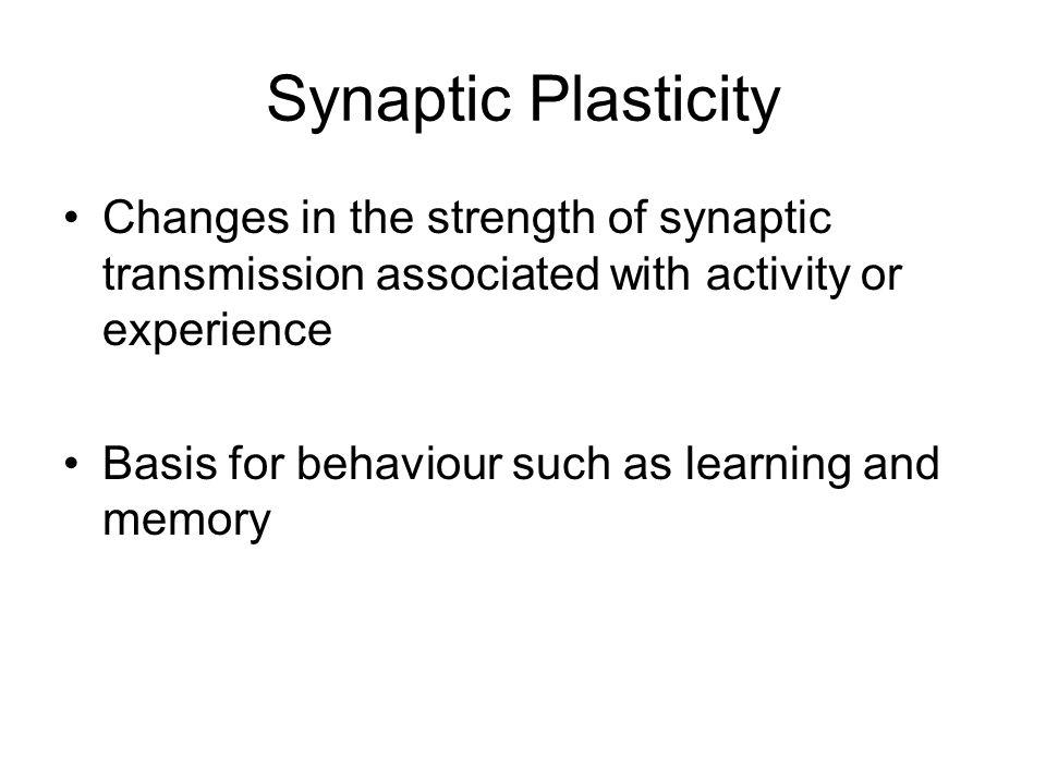 1.Heterosynaptic Modulation 2.Long-term Potentiation 3.Homosynaptic Modulation 1.Facilitation 2.Post-tetanic Potentiation Types of synaptic plasticity