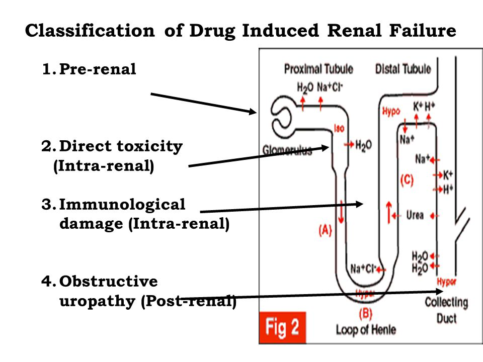 1.Pre-renal 2.Direct toxicity (Intra-renal) 3.Immunological damage (Intra-renal) 4.Obstructive uropathy (Post-renal) Classification of Drug Induced Renal Failure