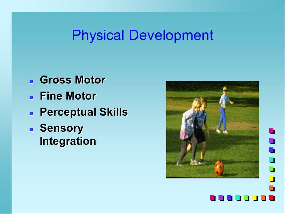 Physical Development n Gross Motor n Fine Motor n Perceptual Skills n Sensory Integration