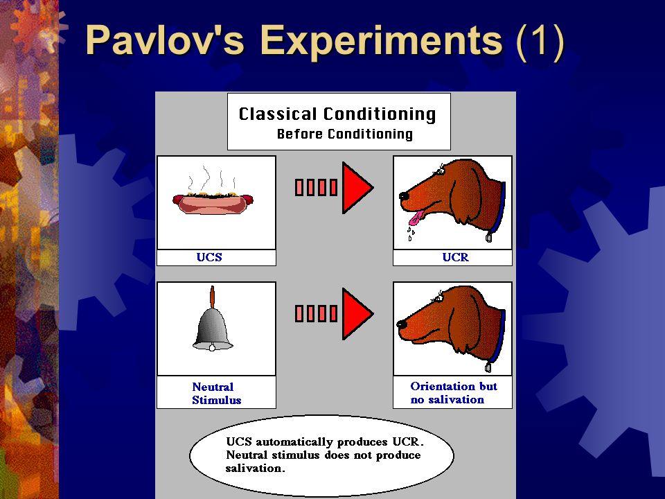 Pavlov s Experiments (1)
