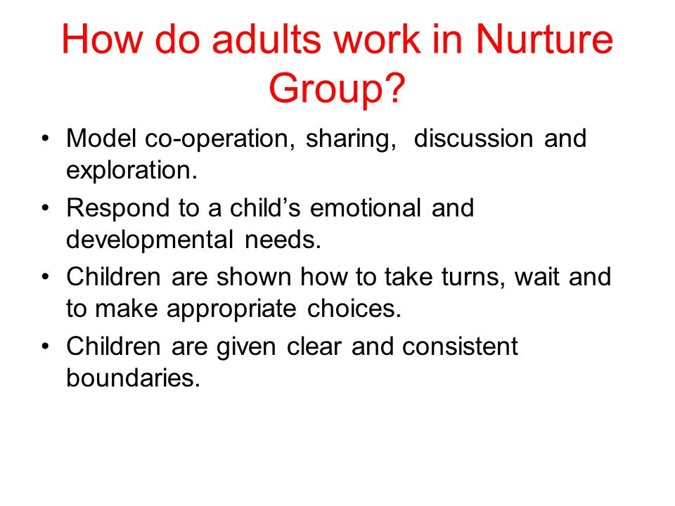 How do adults work in Nurture Group. Model co-operation, sharing, discussion and exploration.