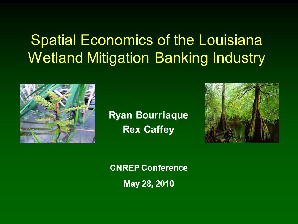 Louisiana Mitigation Banks Issues Difficulties arise when trying to set a credit price: –Value of land –Cost to restore the land –Monitoring/maintenance costs for perpetuity Availability of credits Pricing info for prospective investors on the market Service areas (market limits) may not be fully enforced