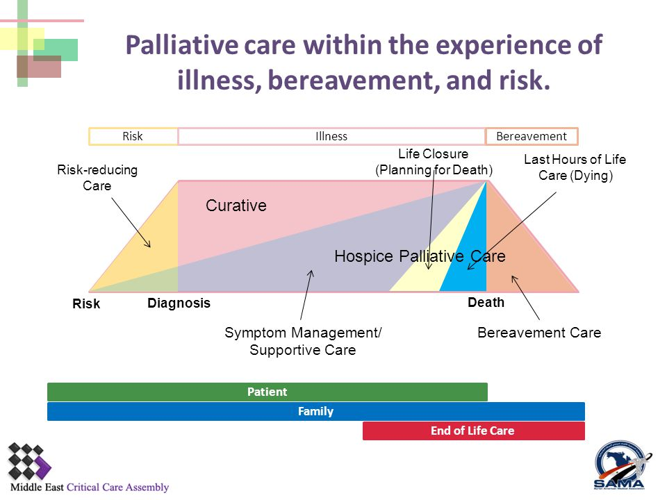 Palliative care within the experience of illness, bereavement, and risk.