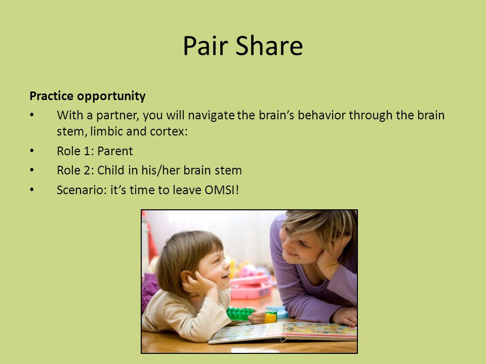 Pair Share Practice opportunity With a partner, you will navigate the brain's behavior through the brain stem, limbic and cortex: Role 1: Parent Role 2: Child in his/her brain stem Scenario: it's time to leave OMSI!