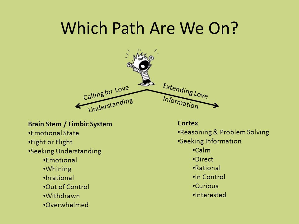 Which Path Are We On? Calling for Love Extending Love Brain Stem / Limbic System Emotional State Fight or Flight Seeking Understanding Emotional Whini