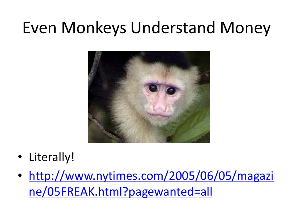 Even Monkeys Understand Money Literally! http://www.nytimes.com/2005/06/05/magazi ne/05FREAK.html?pagewanted=all http://www.nytimes.com/2005/06/05/mag