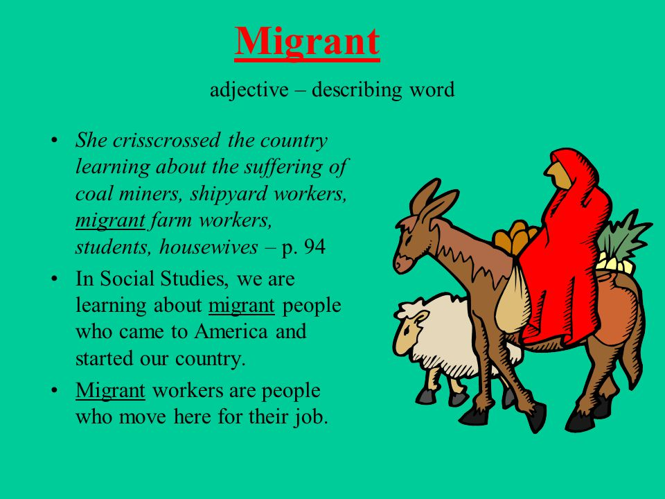 adjective – describing word She crisscrossed the country learning about the suffering of coal miners, shipyard workers, migrant farm workers, students