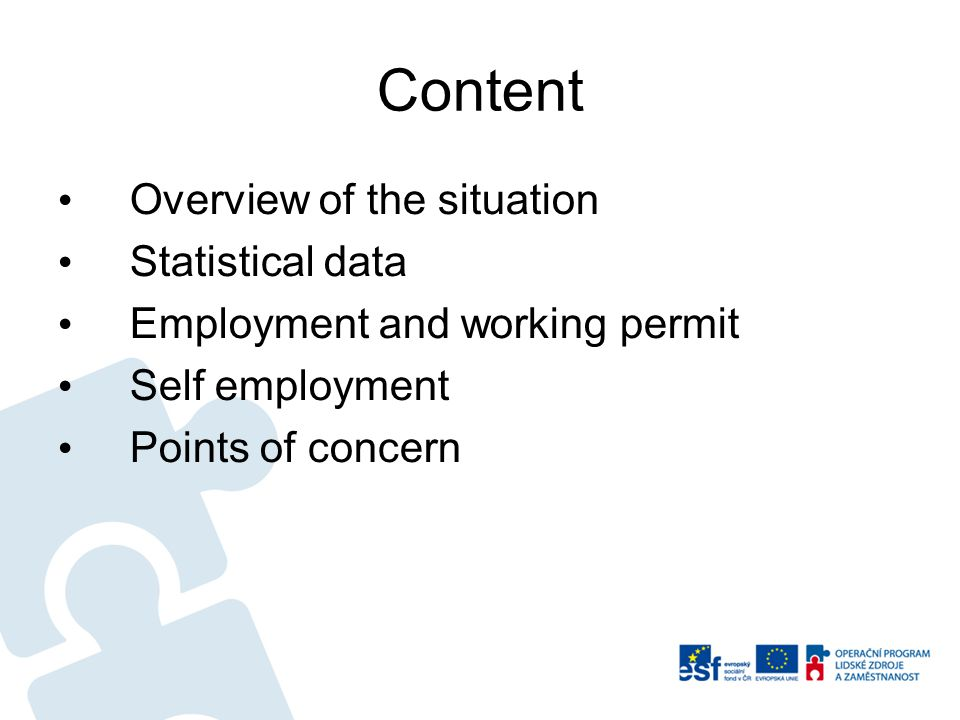 Content Overview of the situation Statistical data Employment and working permit Self employment Points of concern