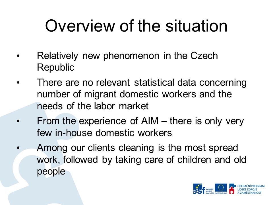 Overview of the situation Relatively new phenomenon in the Czech Republic There are no relevant statistical data concerning number of migrant domestic workers and the needs of the labor market From the experience of AIM – there is only very few in-house domestic workers Among our clients cleaning is the most spread work, followed by taking care of children and old people