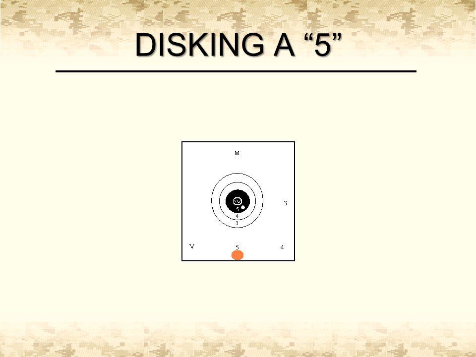 """DISKING A """"5"""""""