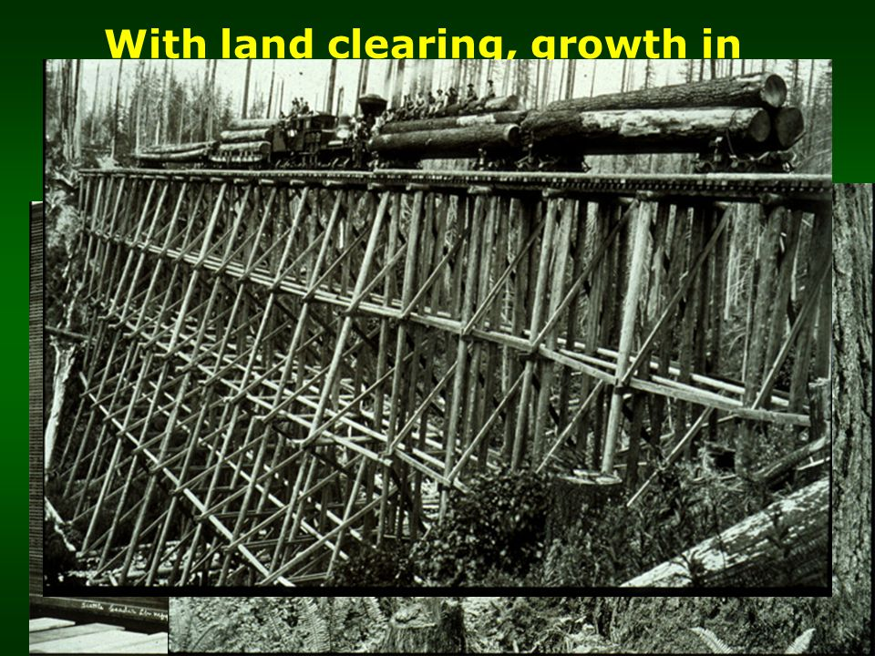 With land clearing, growth in population and industrialization, demand for forest products increases