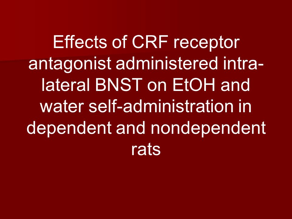 Effects of CRF receptor antagonist administered intra- lateral BNST on EtOH and water self-administration in dependent and nondependent rats