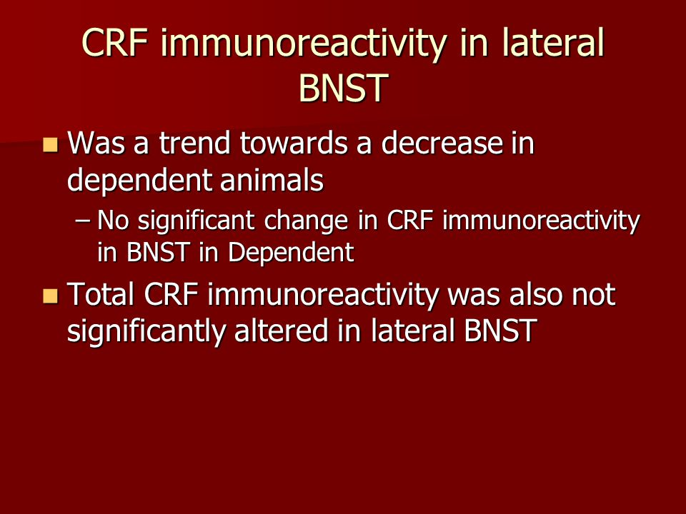 CRF immunoreactivity in lateral BNST Was a trend towards a decrease in dependent animals Was a trend towards a decrease in dependent animals –No signi