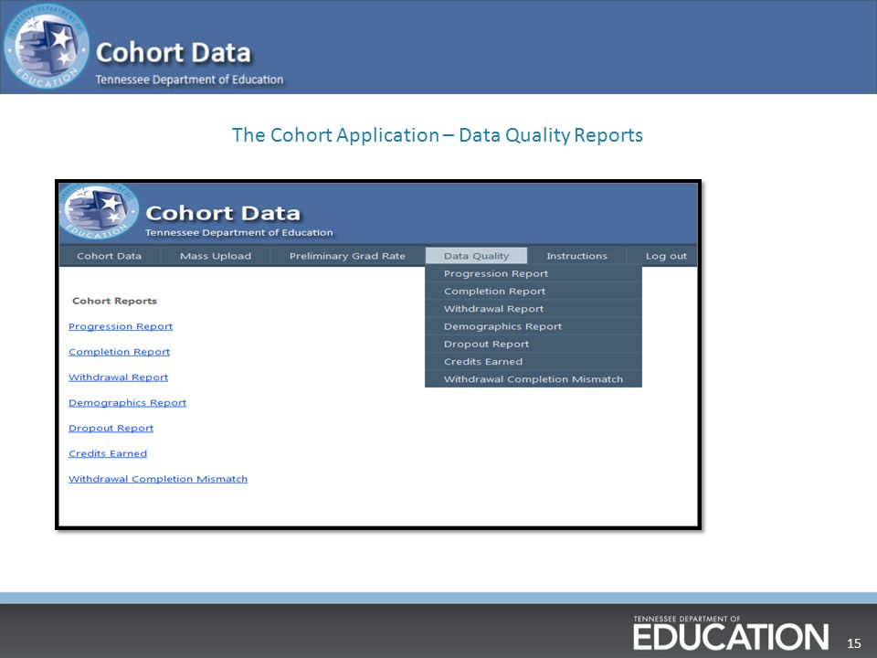 15 The Cohort Application – Data Quality Reports