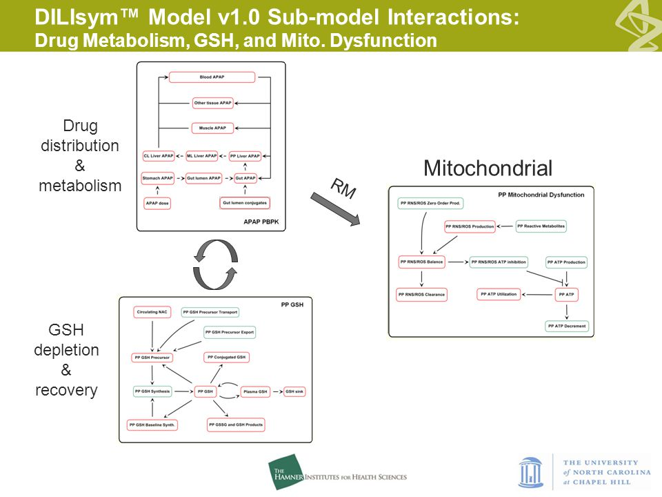DILIsym™ Model v1.0 Sub-model Interactions: Drug Metabolism, GSH, and Mito.