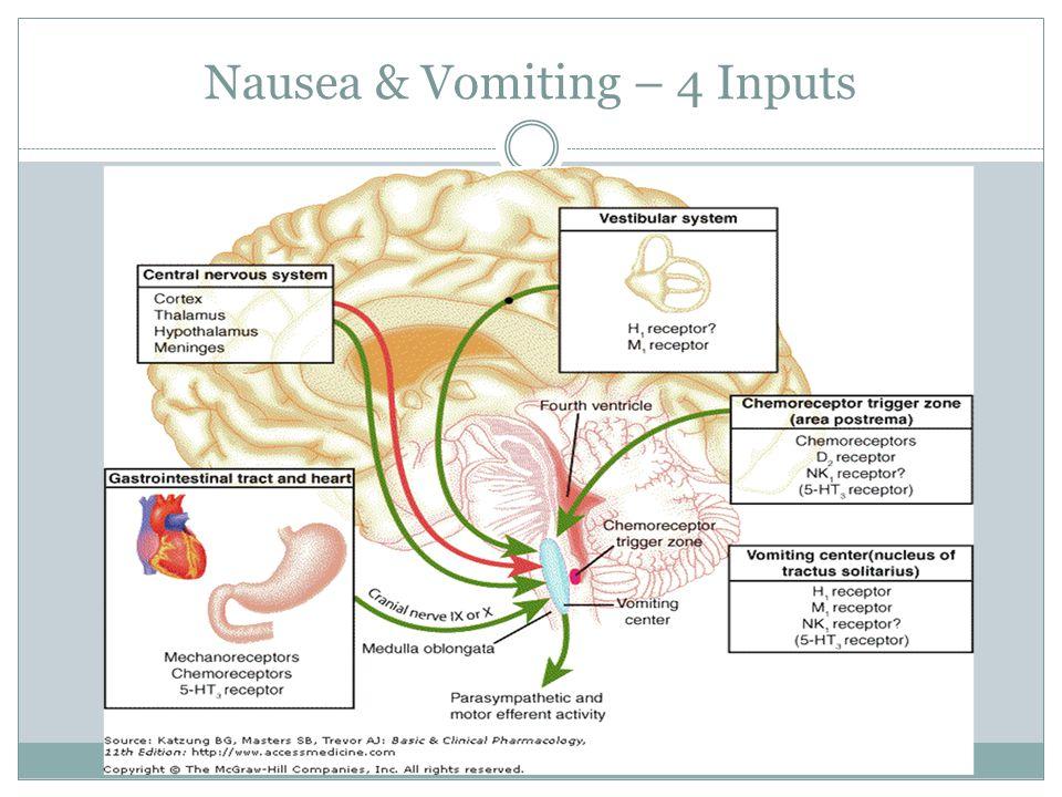 Nausea & Vomiting – 4 Inputs