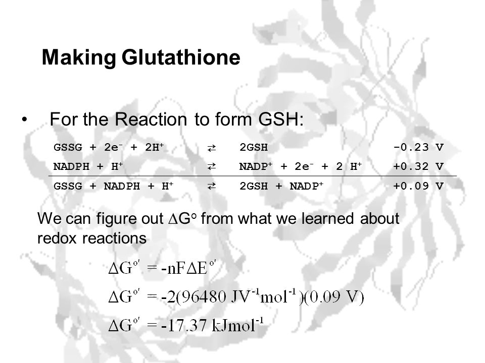 Making Glutathione For the Reaction to form GSH: GSSG + 2e - + 2H + ⇄ 2GSH-0.23 V NADPH + H + ⇄ NADP + + 2e - + 2 H + +0.32 V GSSG + NADPH + H + ⇄ 2GSH + NADP + +0.09 V We can figure out  G o from what we learned about redox reactions