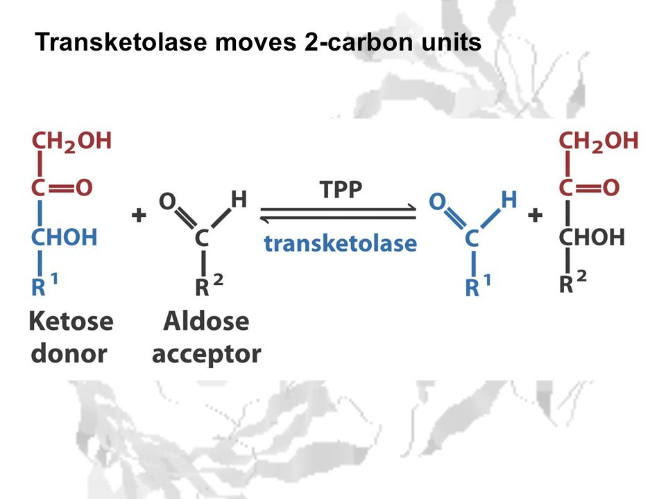 Transketolase moves 2-carbon units